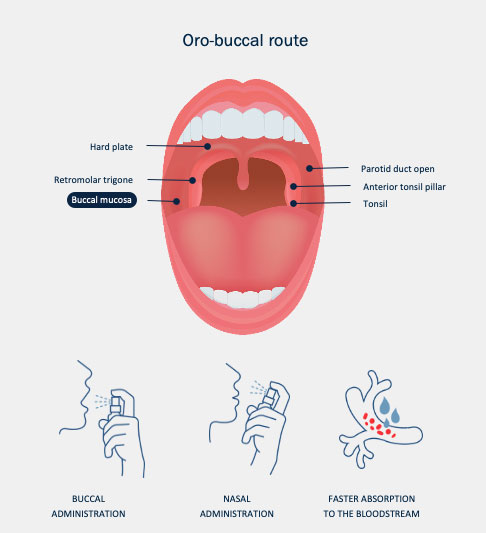 Medlab Ora-Buccal route